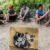 Đánh sập ổ nhóm đánh bạc tại khu vườn hoang ở Vĩnh Long