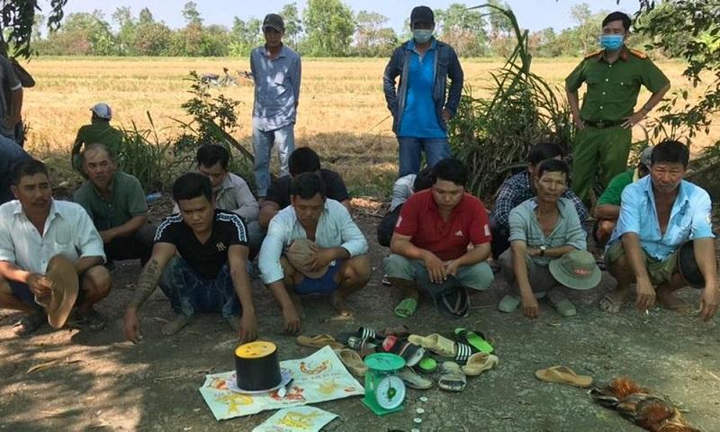 Bắt quả tang sới bạc giữa cánh đồng tại Tiền Giang